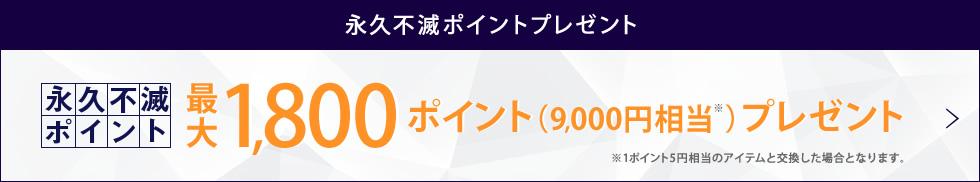 header02_aaa02.jpg