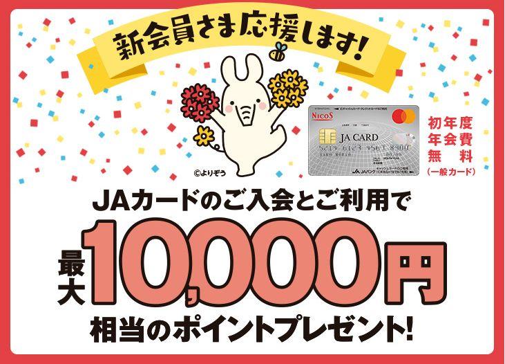jacard1.jpg
